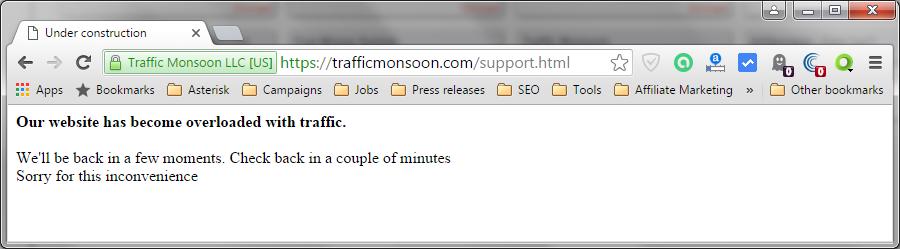 "Screenshot with the message ""Our website has become overloaded with traffic."""